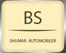 BS Biler Logo
